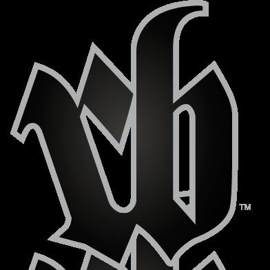 royboy-logo2